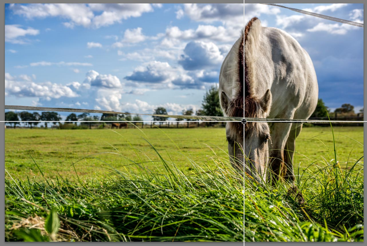 lightroom-5-hilfslinien
