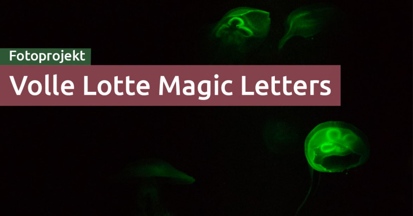 Volle Lotte Magic Letters: A-Z